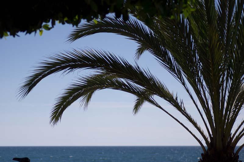 Hav Marbella