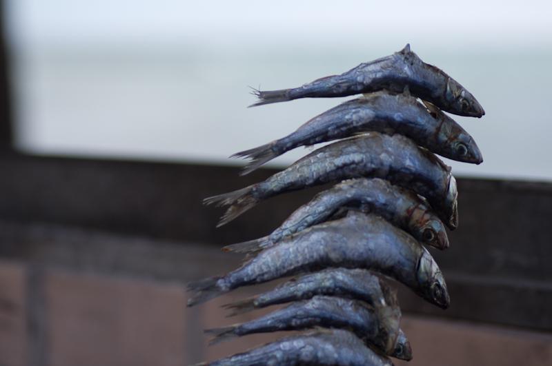 Fiskar på spett