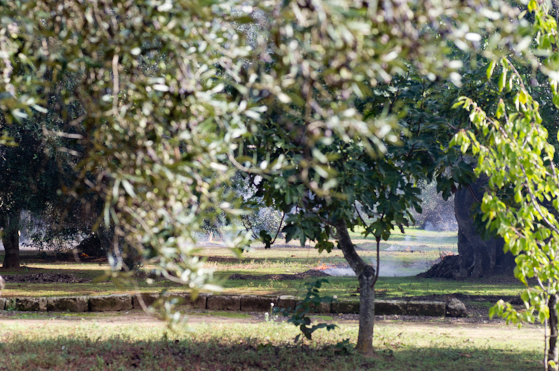 Kreationslotsen, skrivkurs, skrivresa, Villa Ottilia, Italien